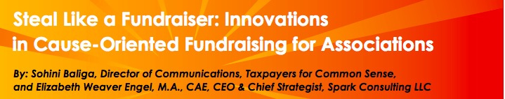 Steal Like a Fundraiser: Innovations in Cause-Oriented Fundraising for Associations